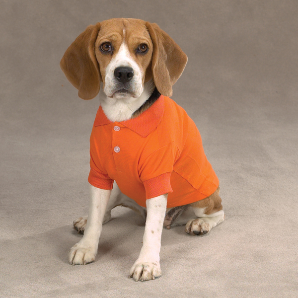 Casual Canine Basic Polo Dog Shirt - Orange