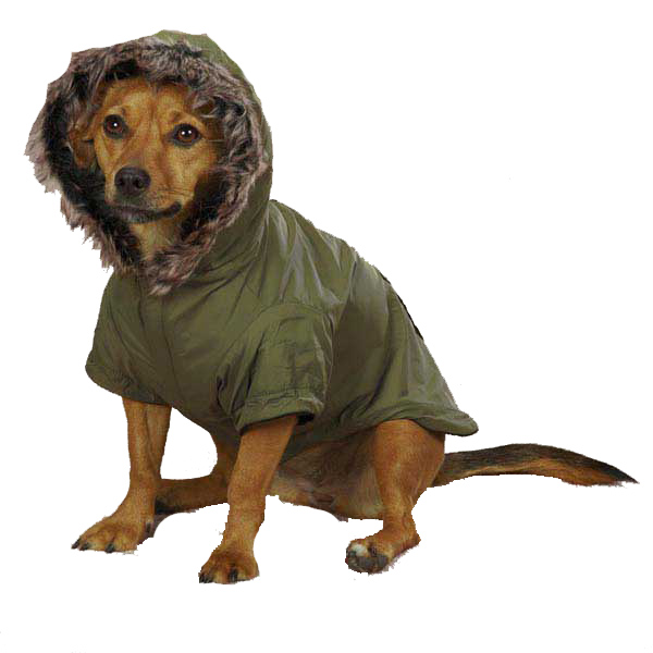 Casual Canine Fur Trim Dog Parka - Chive