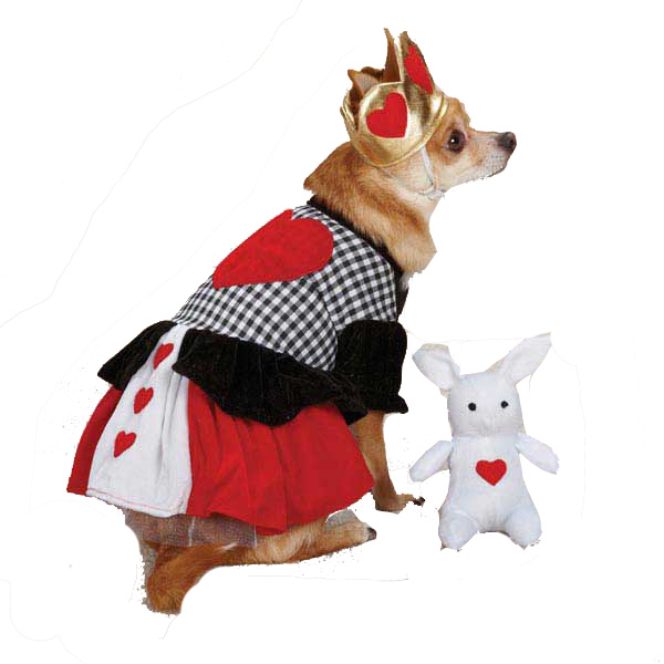 Casual Canine Queen of Hearts Dog Costume