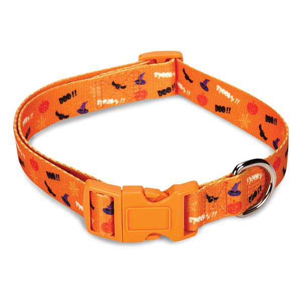 Casual Canine Spooky Dog Collar - Orange