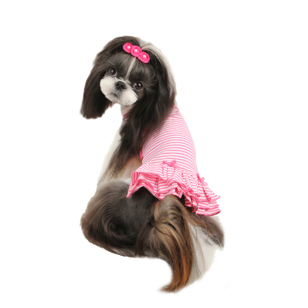Cheerleader Dog Dress by Pinkaholic - Pink