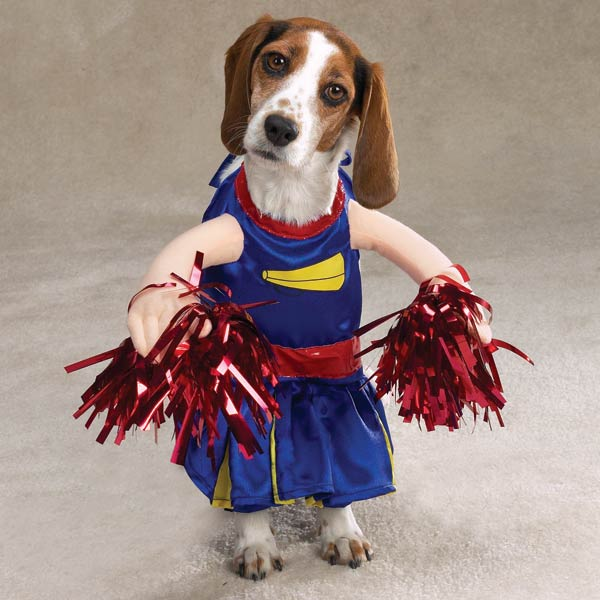 Cheerleader Dog Halloween Costume by Casual Canine