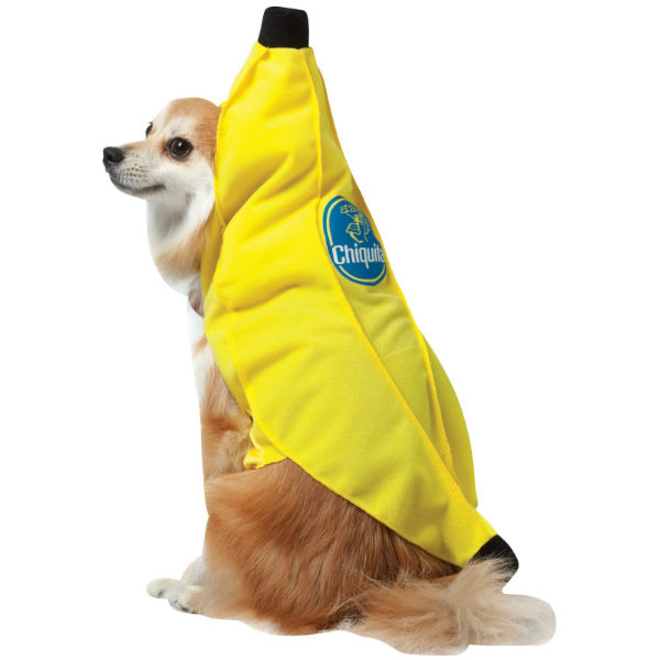 Chiquita Banana Dog Costume by Rasta Imposta