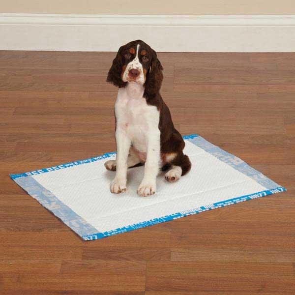 Clean Go Pet Graffiti Puppy Pads - Blue