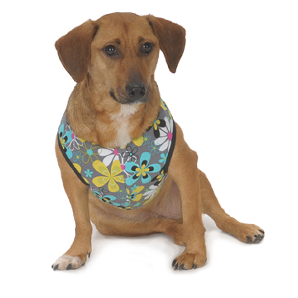 Cloak & Dawggie Step-N-Go Harness - Mod Floral with Turquoise
