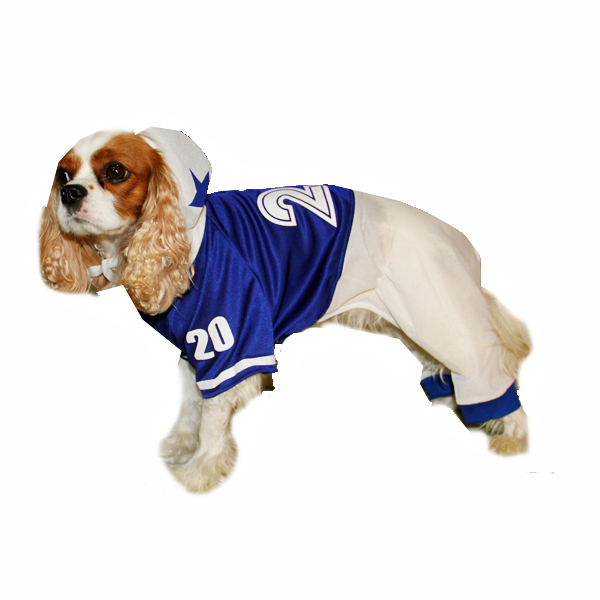 Collegiate Football Player Dog Costume - Blue