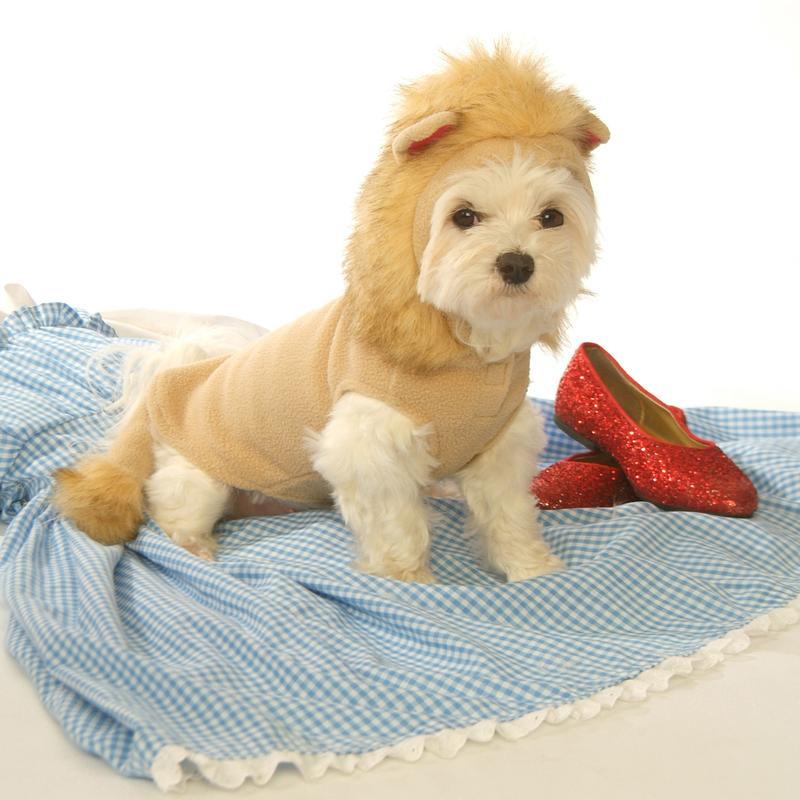 Cozy Lion Fleece Dog Hoodie