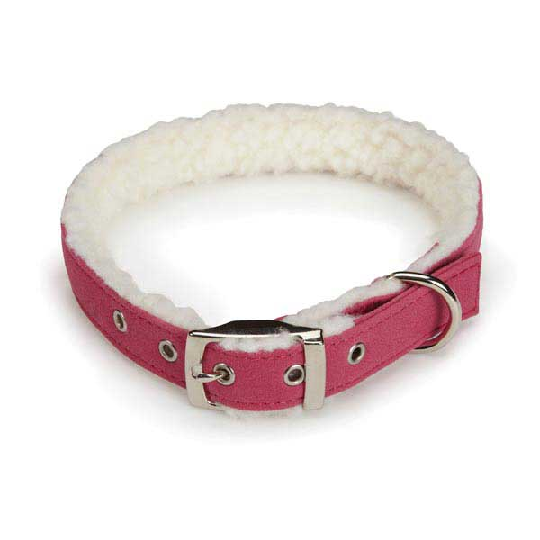 Cozy Sherpa Dog Collar by East Side Collection - Raspberry