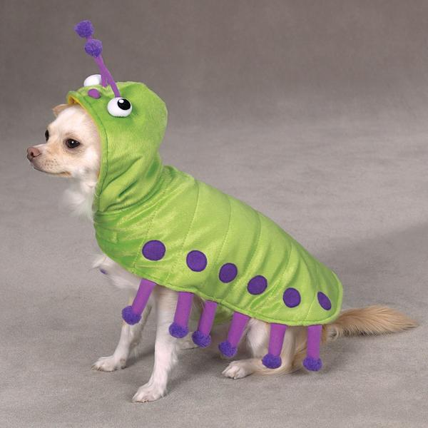 Cutiepillar Dog Costume by Zack & Zoey