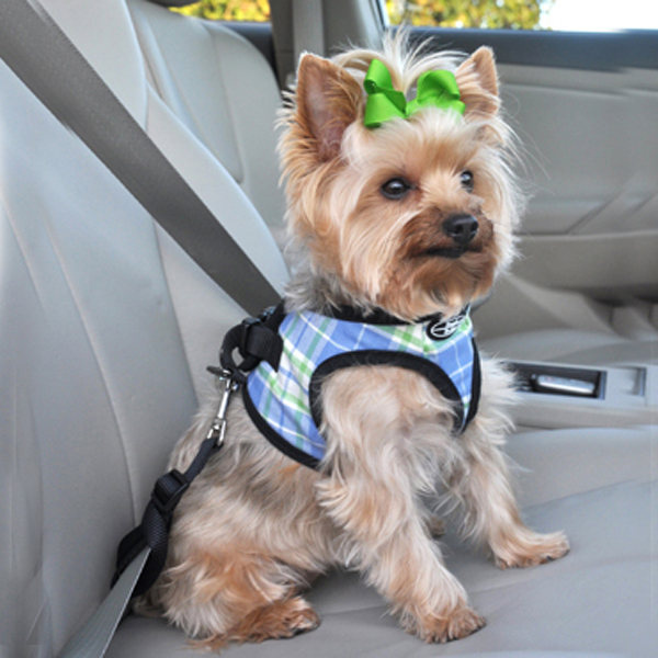Designer Choke-Free Step-In Dog Harness - Pacific Blue Plaid