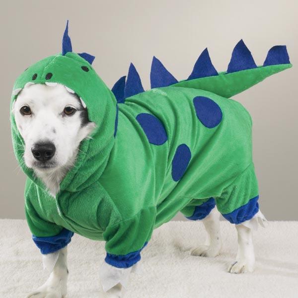 Dinosaur Dog Halloween Costume by Casual Canine