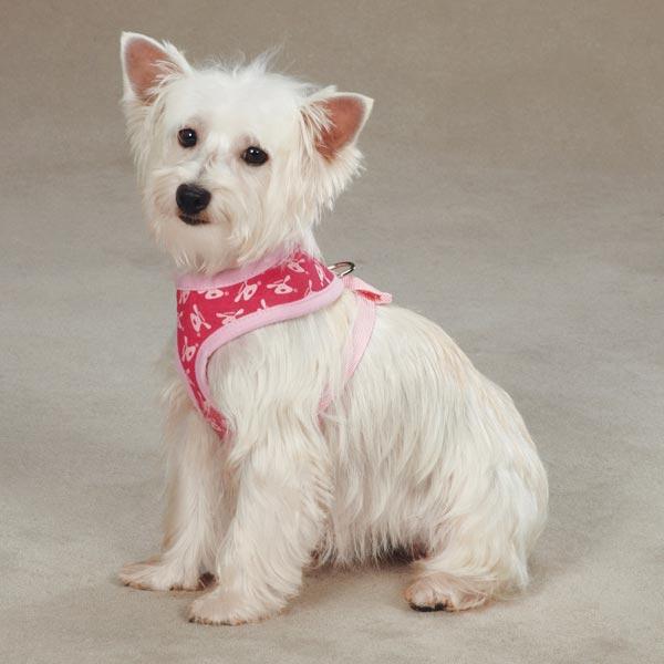 Dog is Good Bolo Dog Harness - Raspberry Sorbet