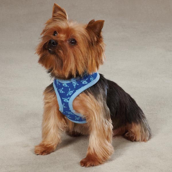 Dog is Good Bolo Dog Harness - Sky Diver Blue