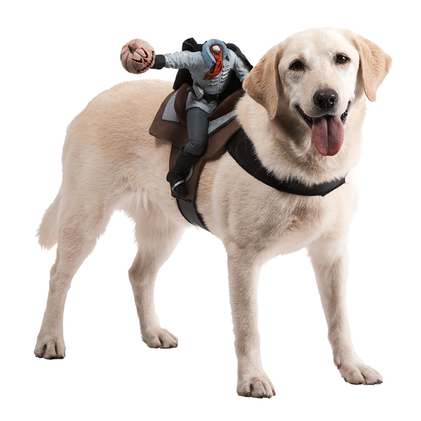 Dog Riders Harness Halloween Costume - Headless Horseman