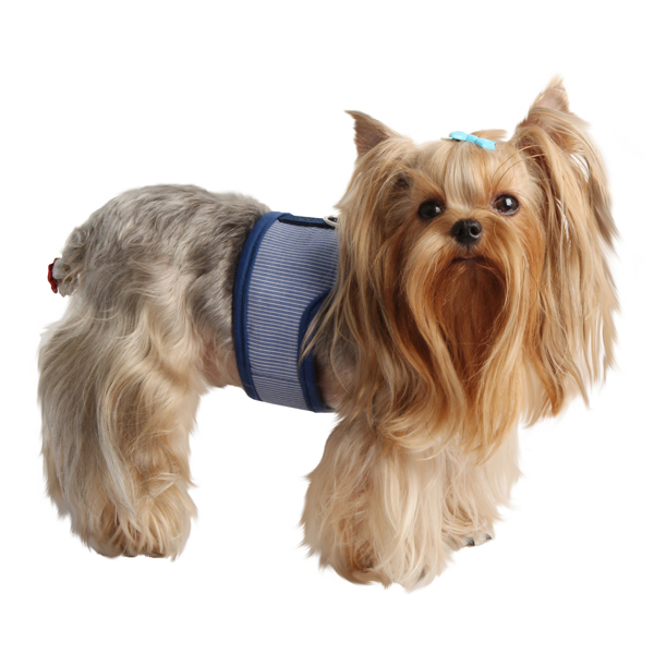 Downy Pinka Dog Harness by Pinkaholic - Navy