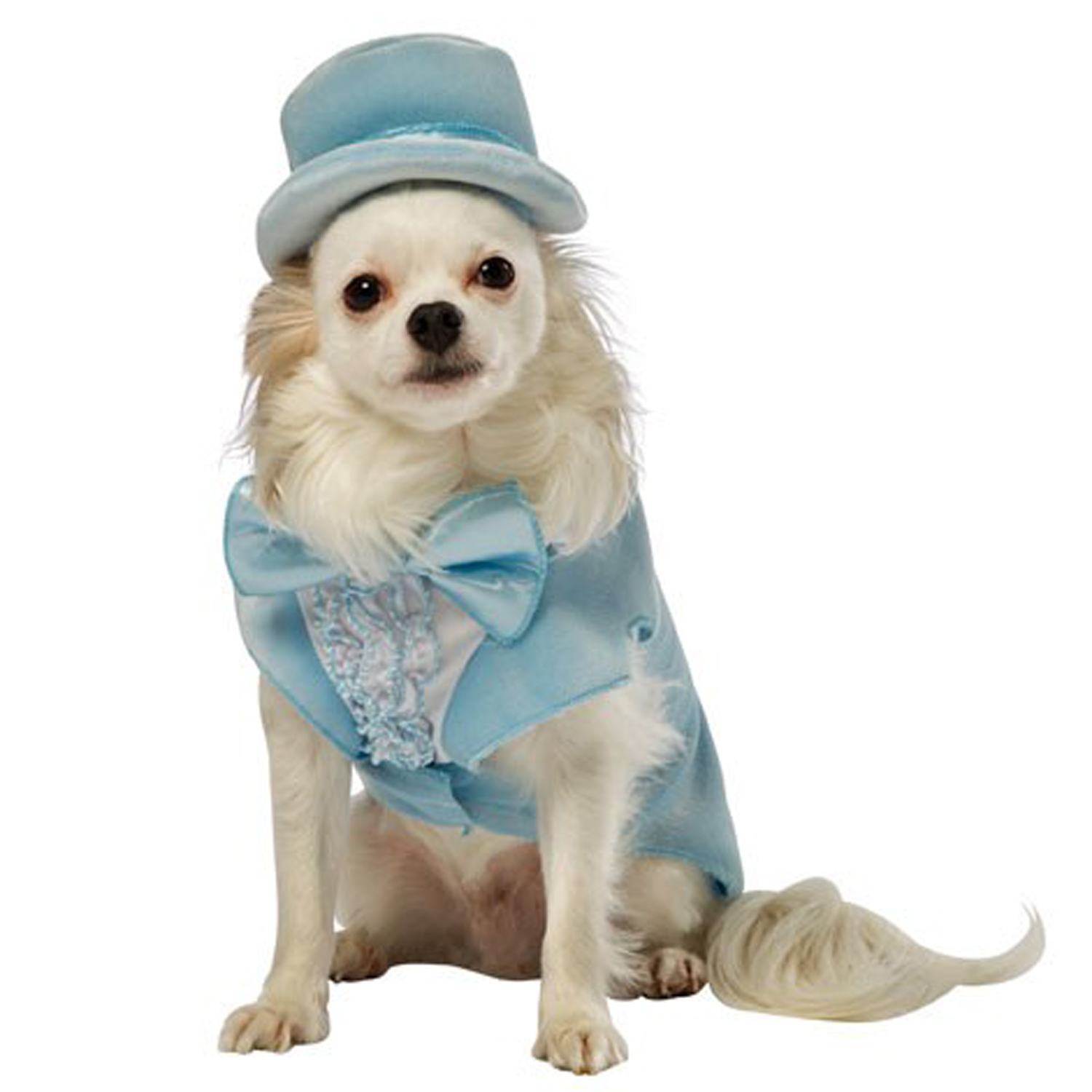 Dumb and Dumber Harry Tux Dog Costume - Blue