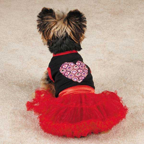 Full of Heart Tutu Dog Dress