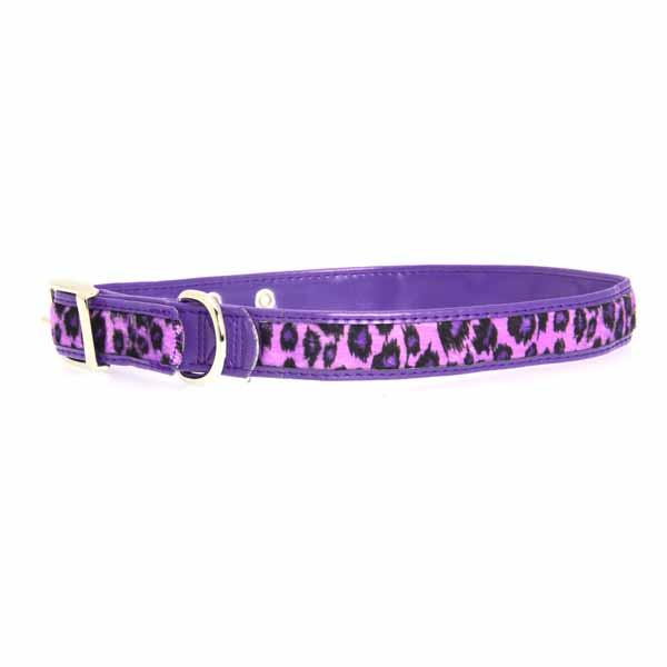 Vibrant Leopard Dog Collar - Ultra Violet