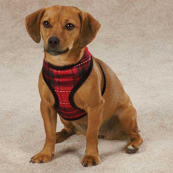 Yuletide Tartan Dog Harness