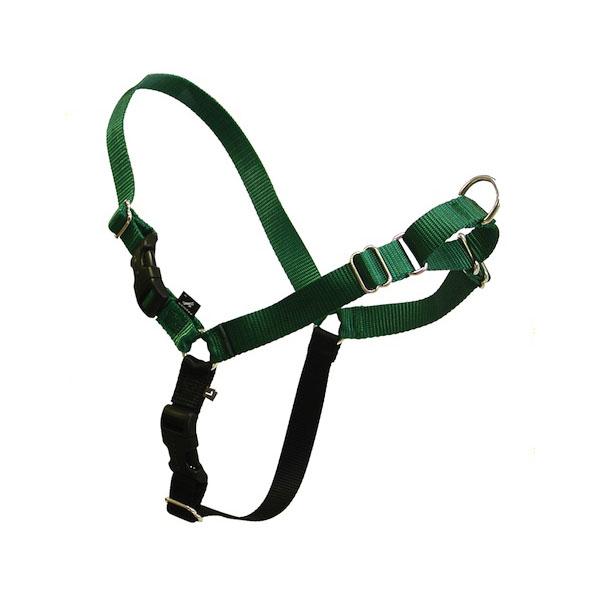 Easy Walk Nylon Harness by Premier - Green