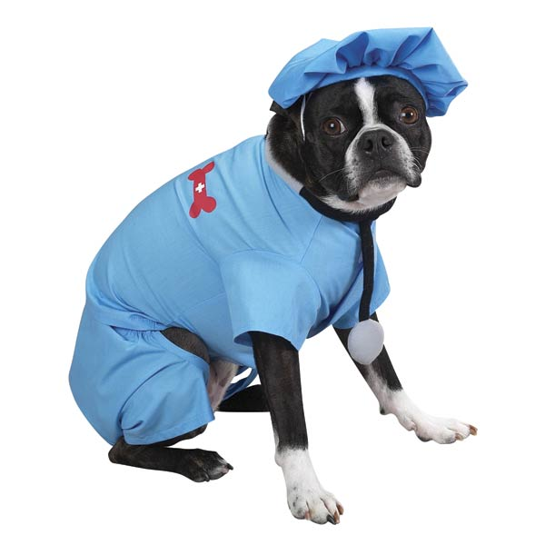 ER Doctor Dog Halloween Costume by Casual Canine