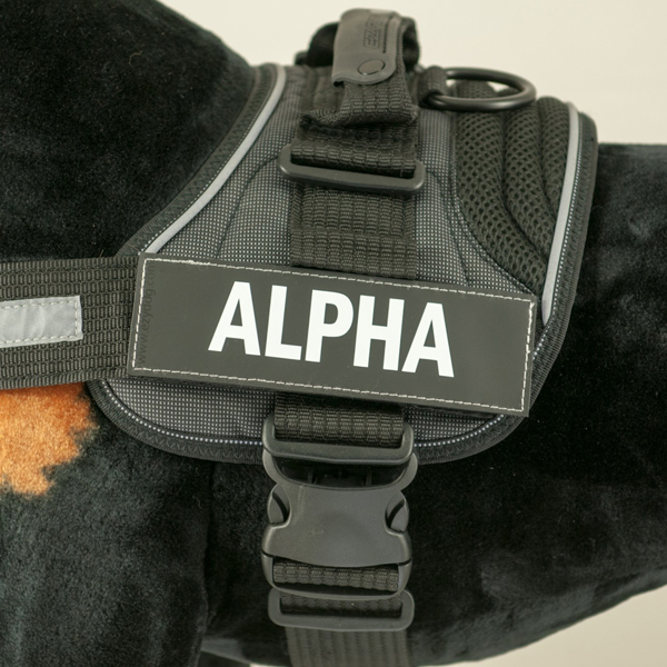 EzyDog Convert Harness Custom Side Patches - Alpha
