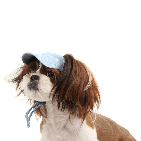 Fifi Dog Hat by Pinkaholic - Light Blue