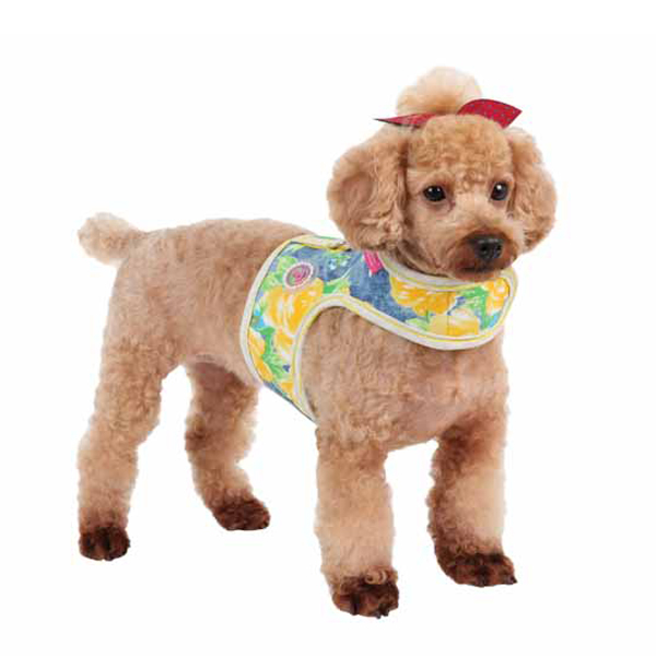 Fiore Pinka Dog Harness by Pinkaholic - Yellow