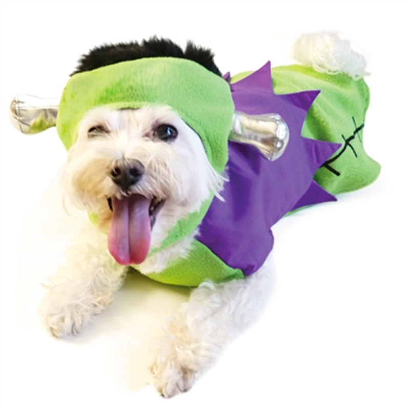 Frankenstein Hat and Dog Shirt by Dogo