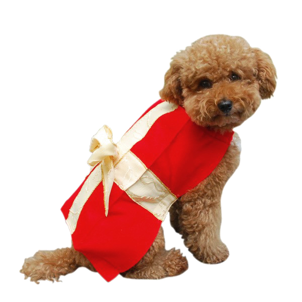 Gift Box Christmas Dog Costume