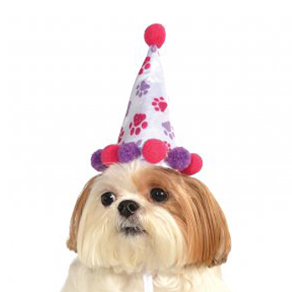 Girl Paw Print Birthday Dog Hat