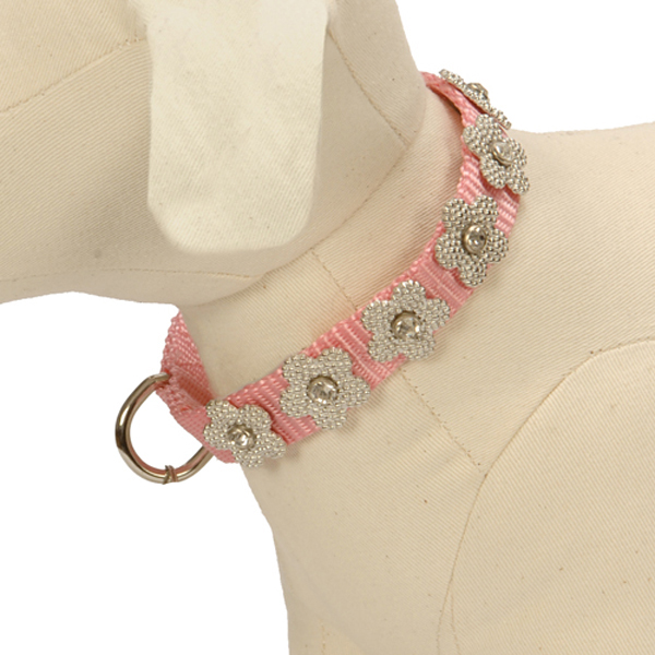 Gracie Silver on Pink Daisy Dog Collar