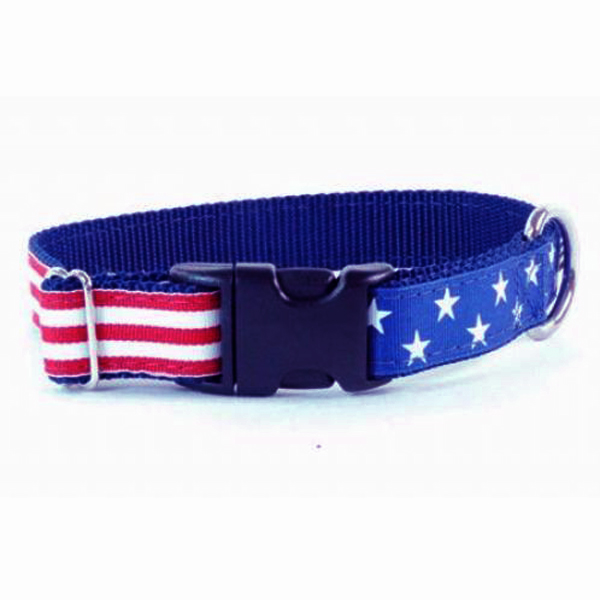 Grand Old Flag Essential Dog Collar
