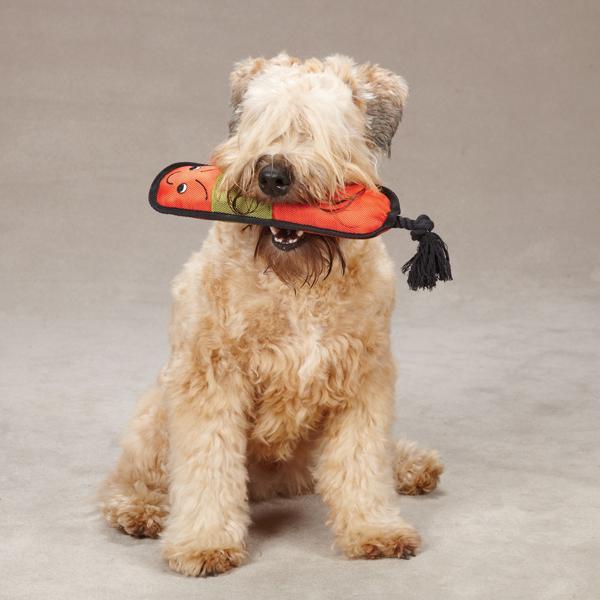 Grriggles Burlies Tough Dog Toy - Caterpillar