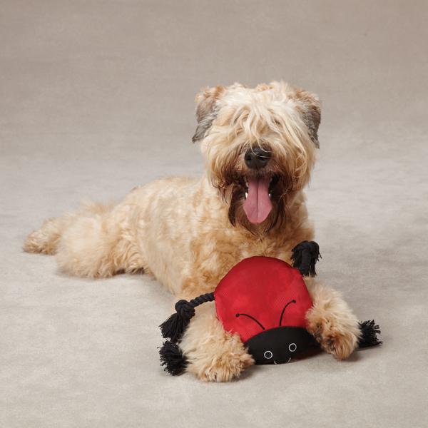 Grriggles Burlies Tough Dog Toy - Ladybug