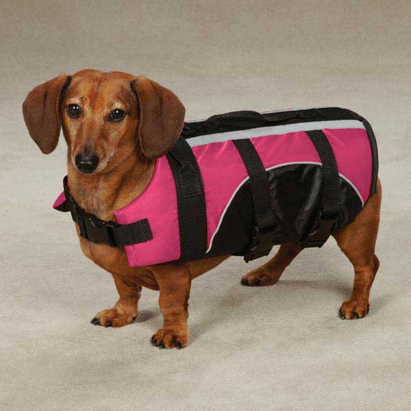 Guardian Gear Brite Pet Preserver - Raspberry