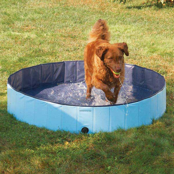 Guardian Gear Splash about Dog Pool - Sky Blue