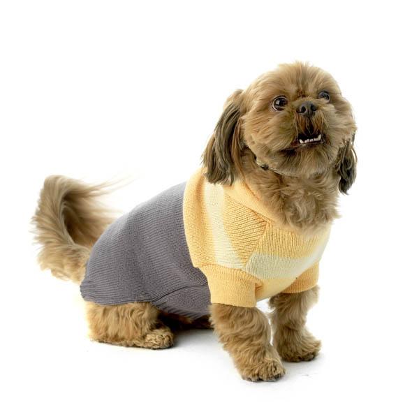 Harley's Hooded Dog Sweater - Cornsilk & Gray
