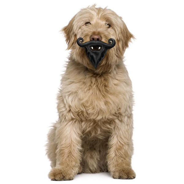 Humunga Stache and Beard Dog Toy