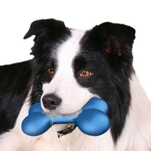 Hydro Bone Dog Toy
