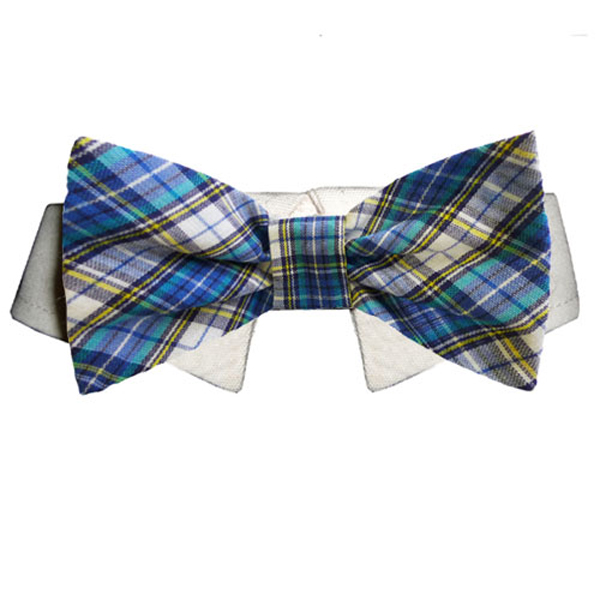 Isaac Dog Shirt Collar and Bow Tie - Blue and Yellow Plaid