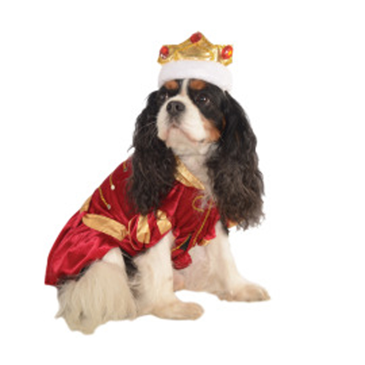 Kanine King Halloween Dog Costume