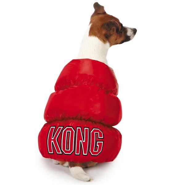 KONG Toy Halloween Dog Costume