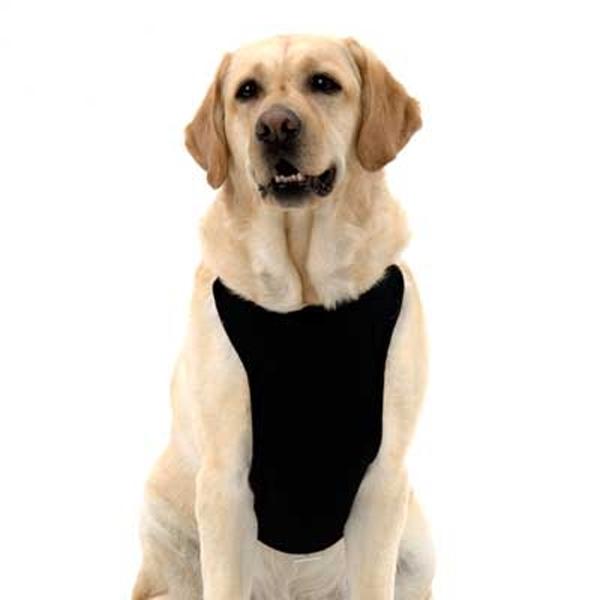 Kumfy Tailz Cools & Warms Mesh Dog Harness - Black