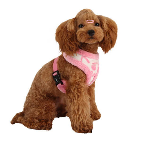 Love Letter Dog Harness by Puppia - Ivory