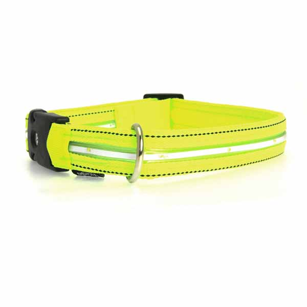Neon Dog Collar with White LEDs - Neon Yellow