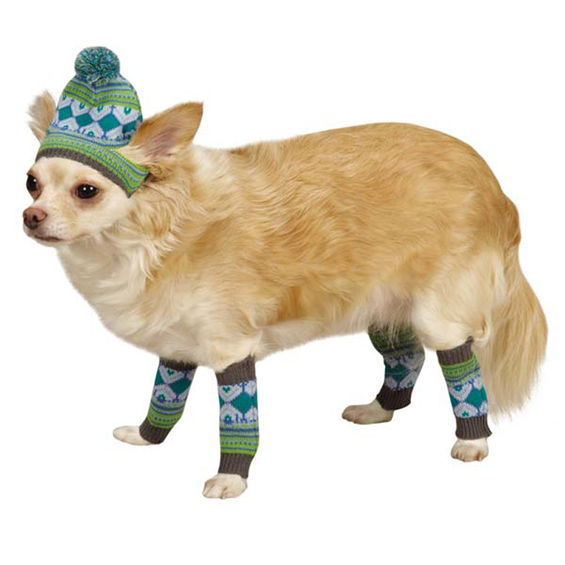 Northern Lights Dog Hat and Leg Warmer Set - Blue