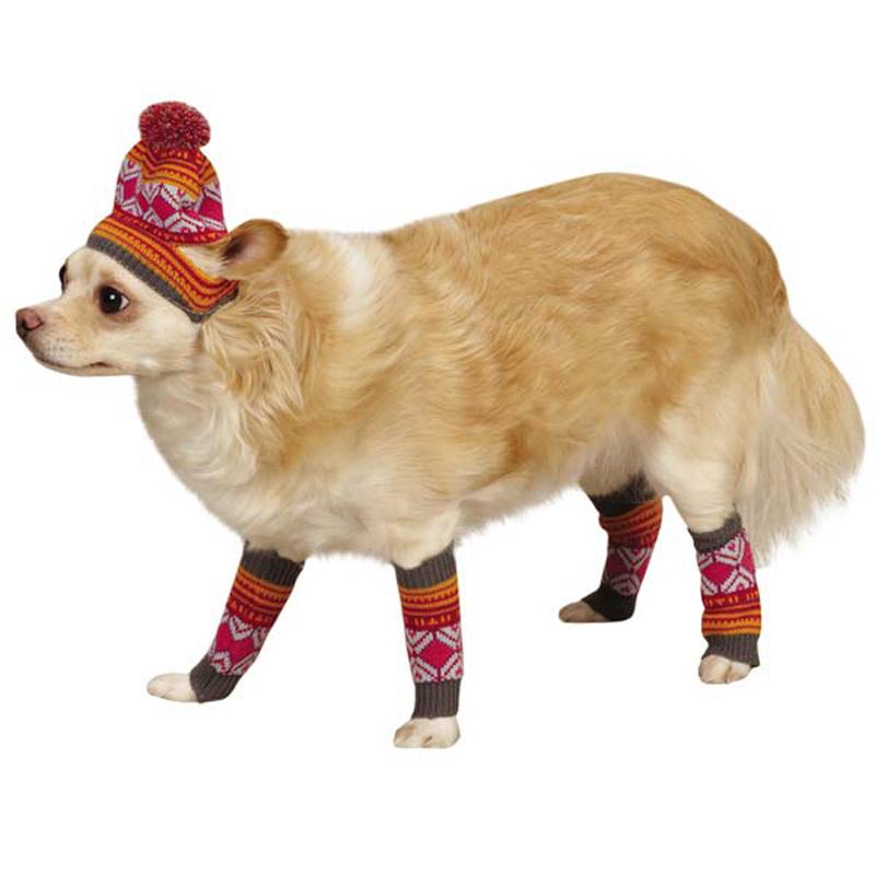 Northern Lights Dog Hat and Leg Warmer Set - Raspberry