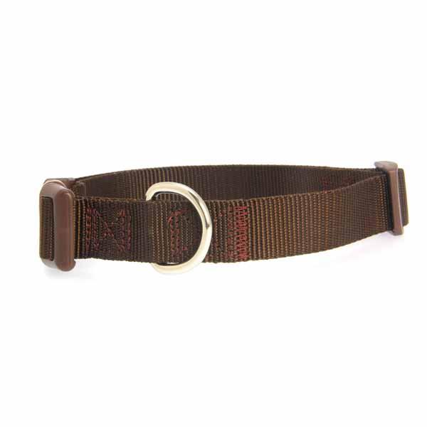 Nylon Dog Collar by Zack & Zoey - Chocolate