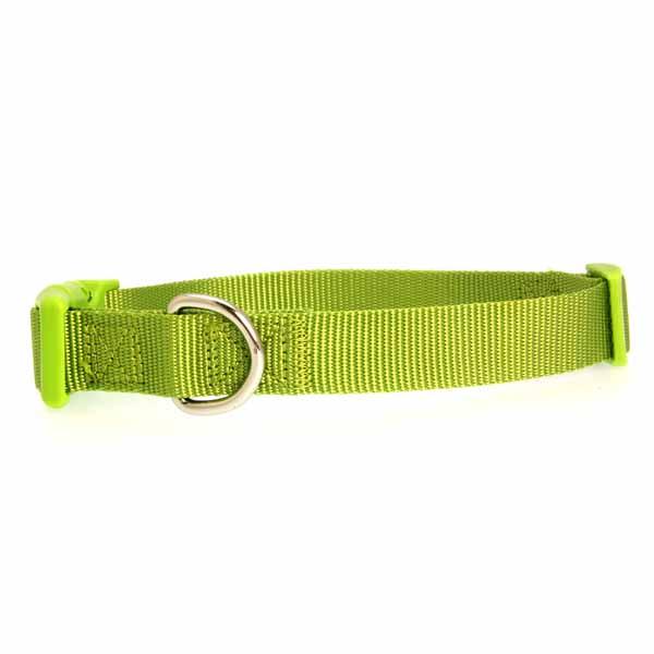 Nylon Dog Collar by Zack & Zoey - Parrot Green